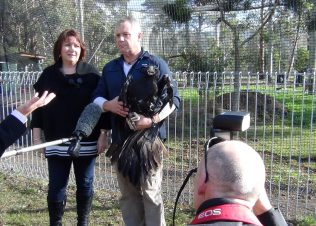 Huon Aquaculture partners with Raptor Refuge and Wildlife Park