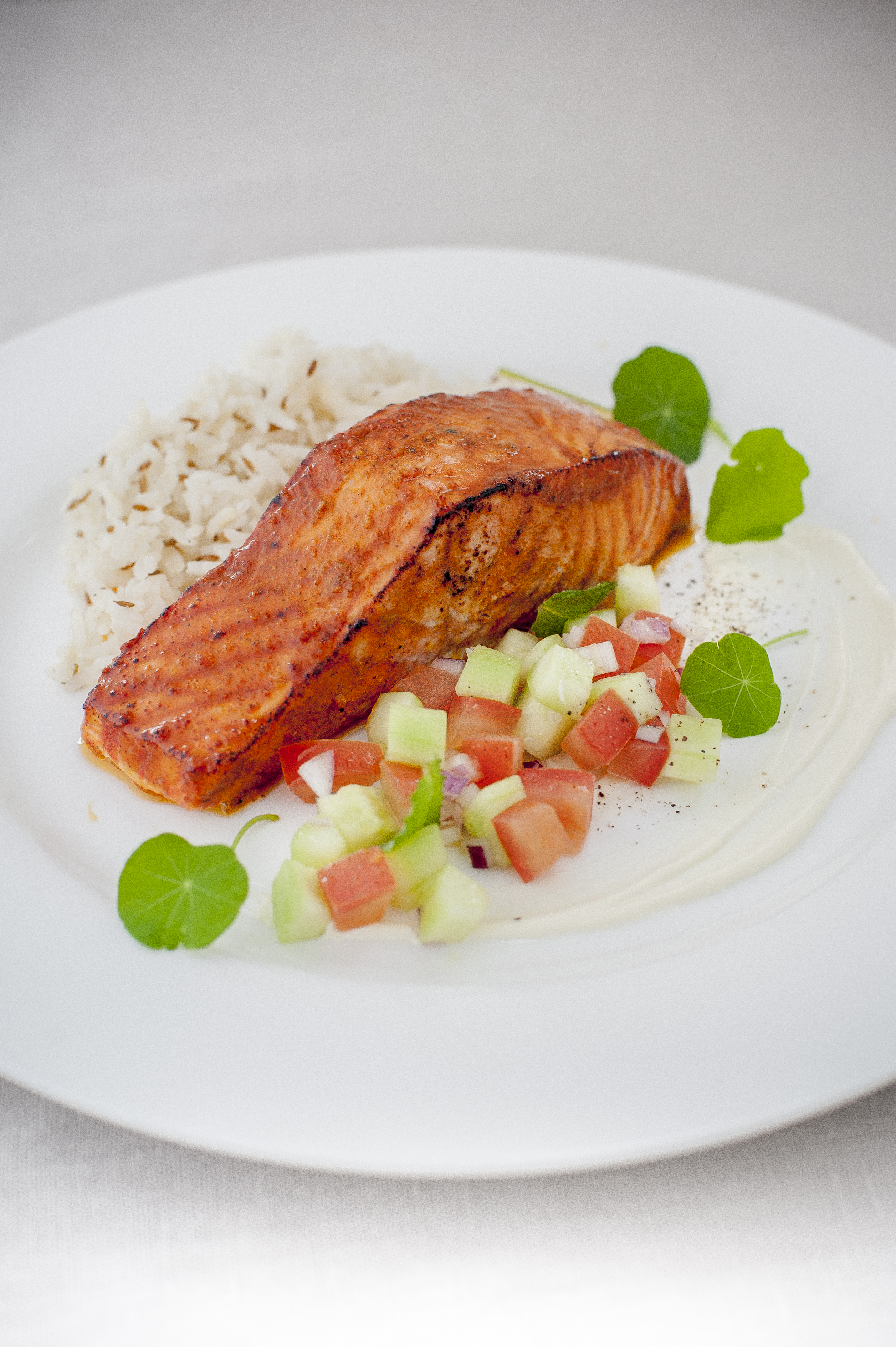 3 Way Refrigerator >> Tandoori salmon portion, spiced rice and cucumber mint salsa