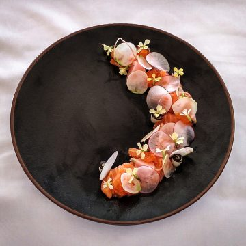 Huon Ocean Trout Sashimi, Radishes, Grapefruit