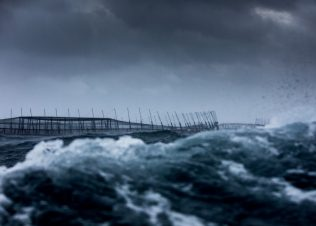 Offshore farming in Storm Bay