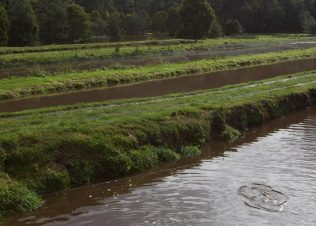 Health of the rivers at Huon hatcheries