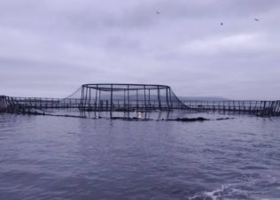 Fire damages Huon Aquaculture fish pen