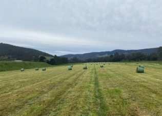 2,000th bale of organic silage