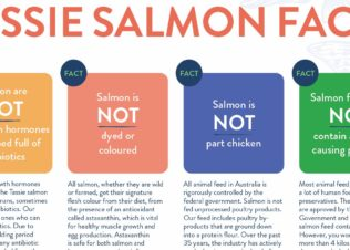 TSGA Salmon Facts